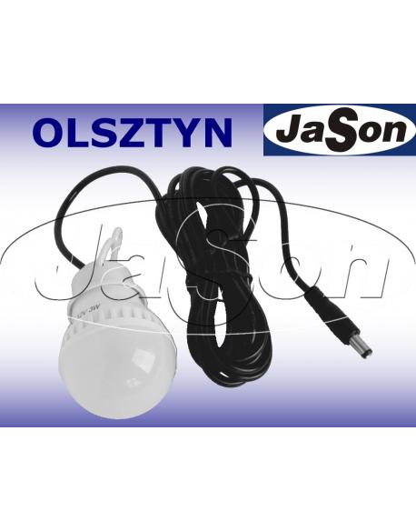 Lampa solarna LED / 3W/12V / z kablem 3m / wtyk DC